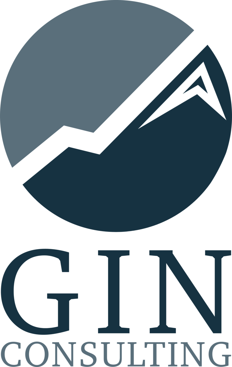 GIN CONSULTING GROUP CORP