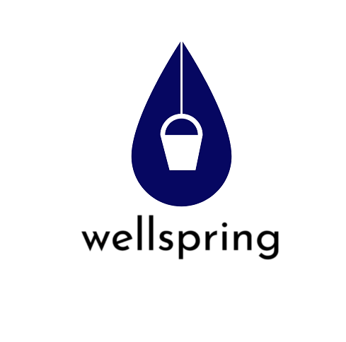 The Wellspring Group